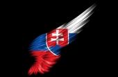 Konšpiračná stránka IdemVoliť.sk je prepojená na lekára z Považskej Bystrice